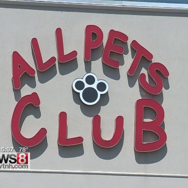 5.27 all pets club_289132