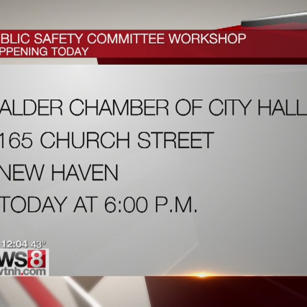 Public safety committee workshop in New Haven