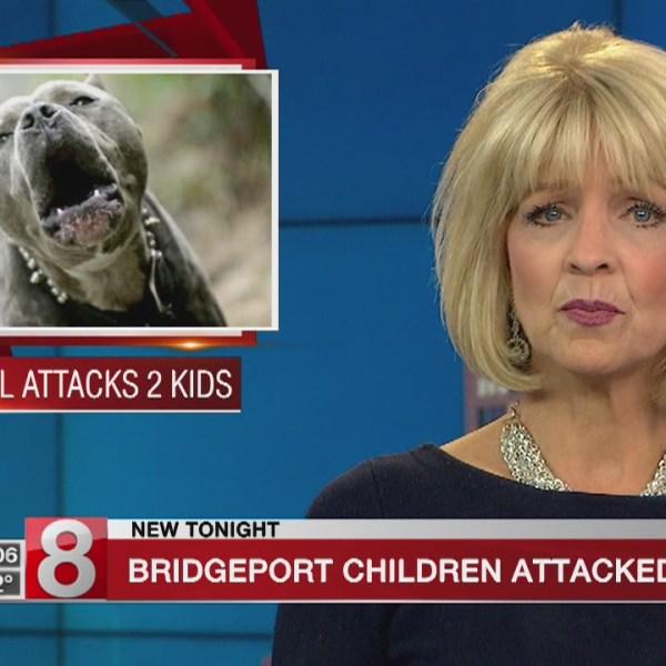 Pitbull attacks two children in Bridgeport