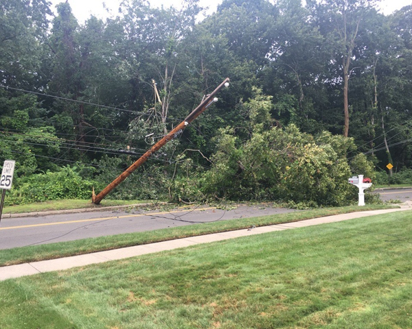 8_5_17 downed wires trees_503773