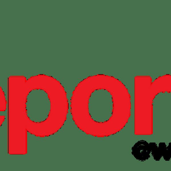 report-it_lakana_1522436260065.png