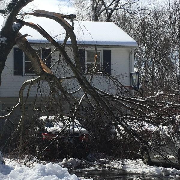 storm damage madison westbrook chester 4_638578