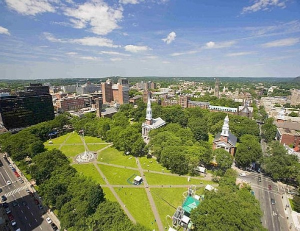 New Haven Green_557448