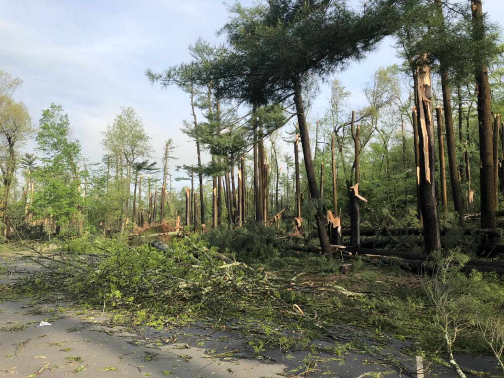 storm damage_1526478659114.jpg.jpg