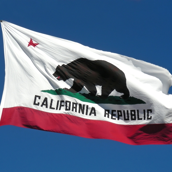 California Flag_1528958757248