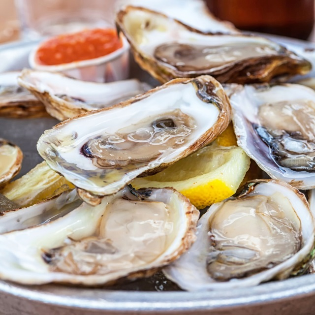 oysters_156094
