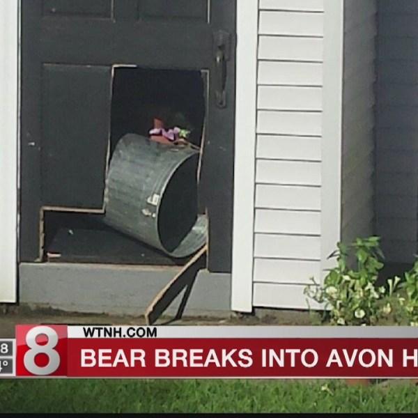 Avon residents watch bear rummage through garbage can
