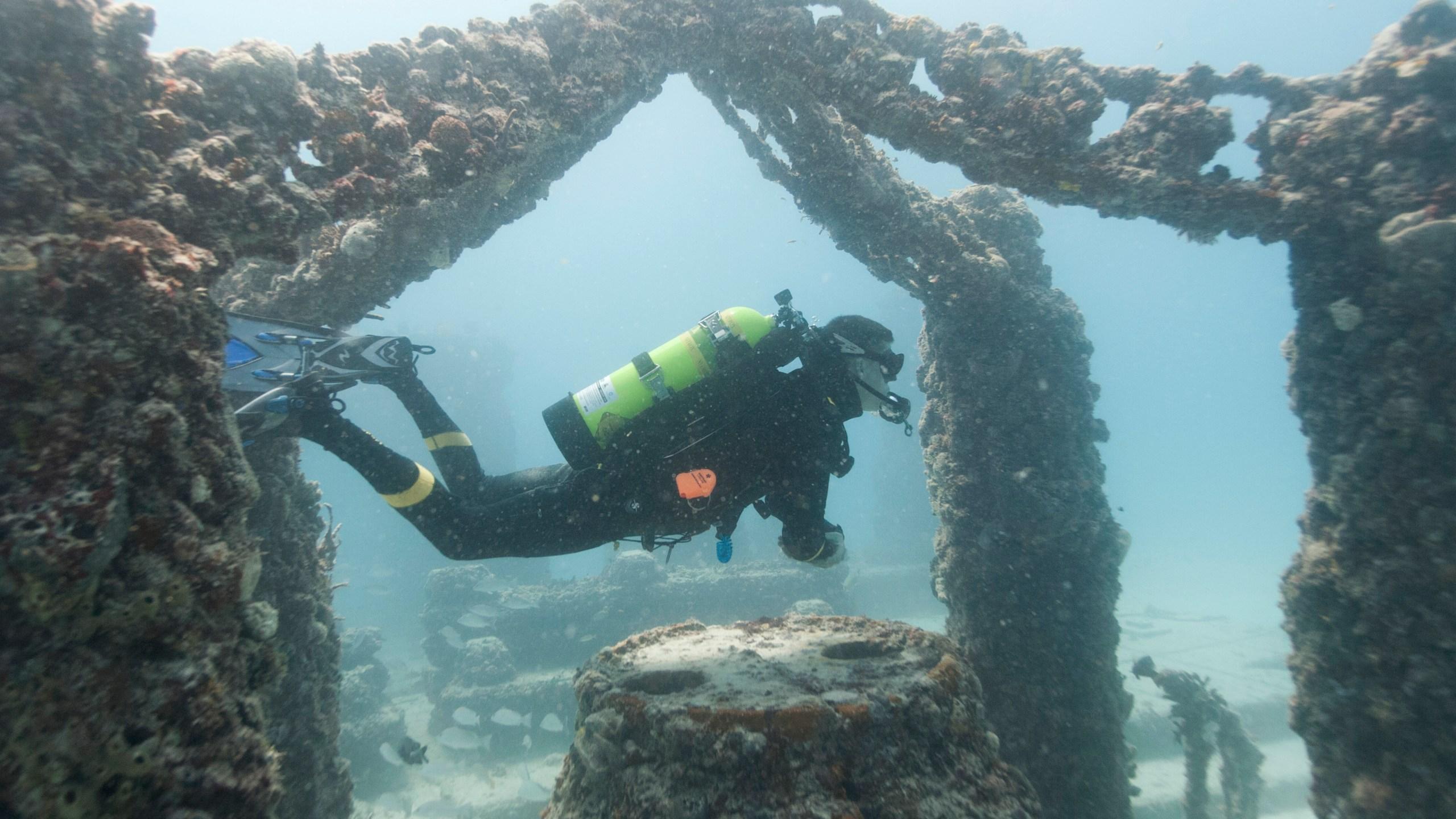 Coral_Reef_Cemetery_87096-159532.jpg27327959