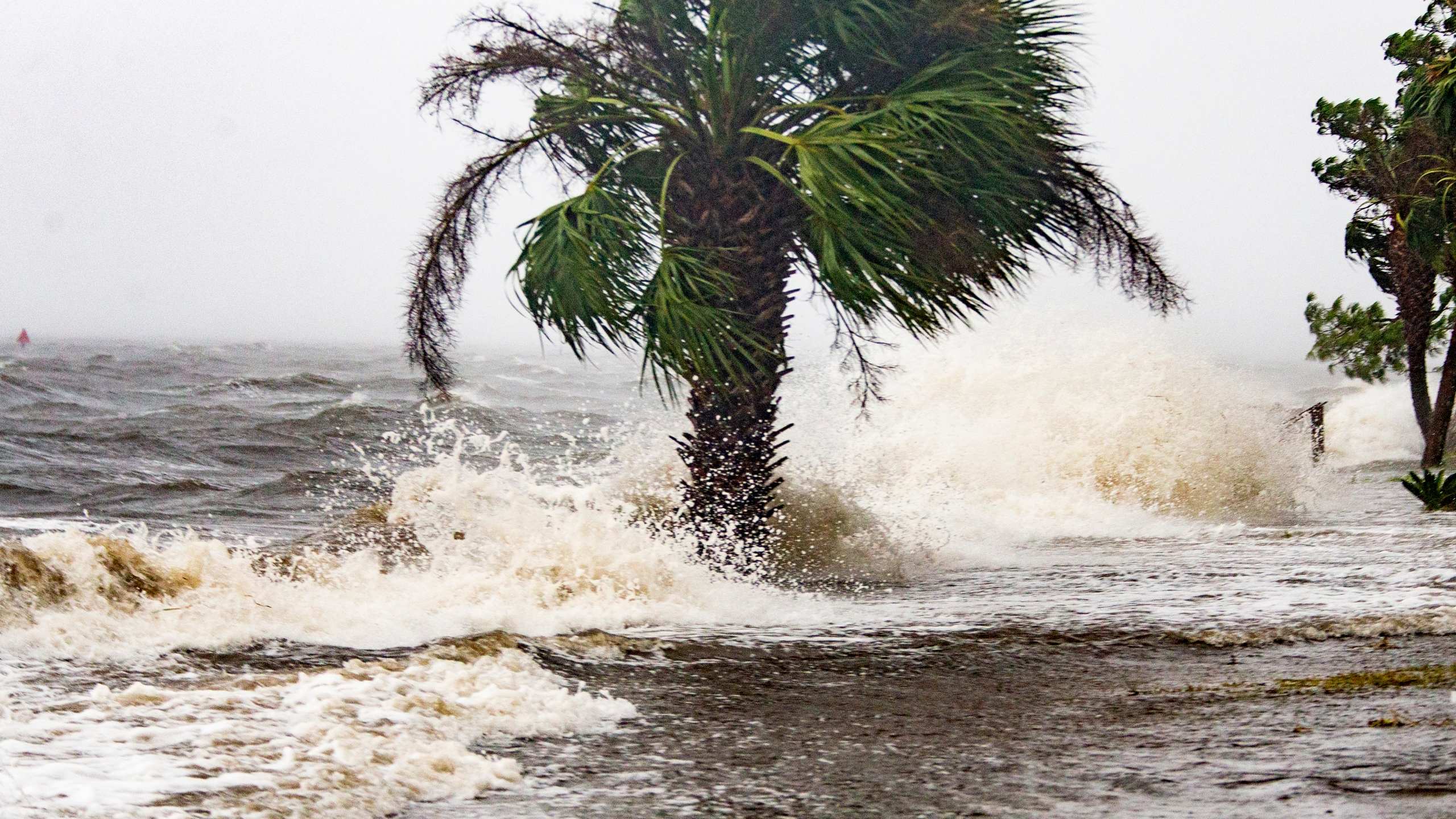 Hurricane Michael 33 mw 101018_1539252313825-873774424