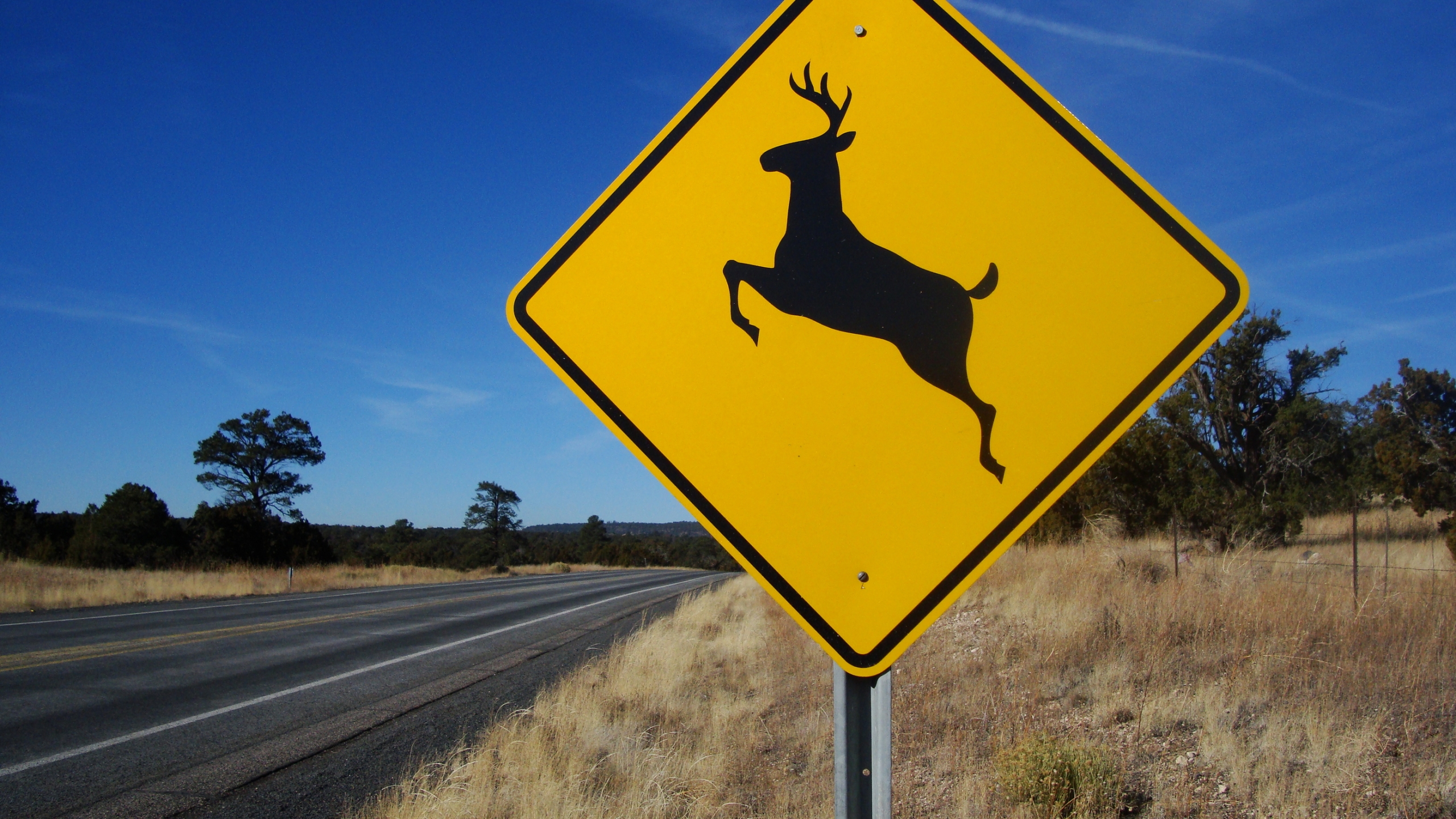 Deer Crossing Sign Generic