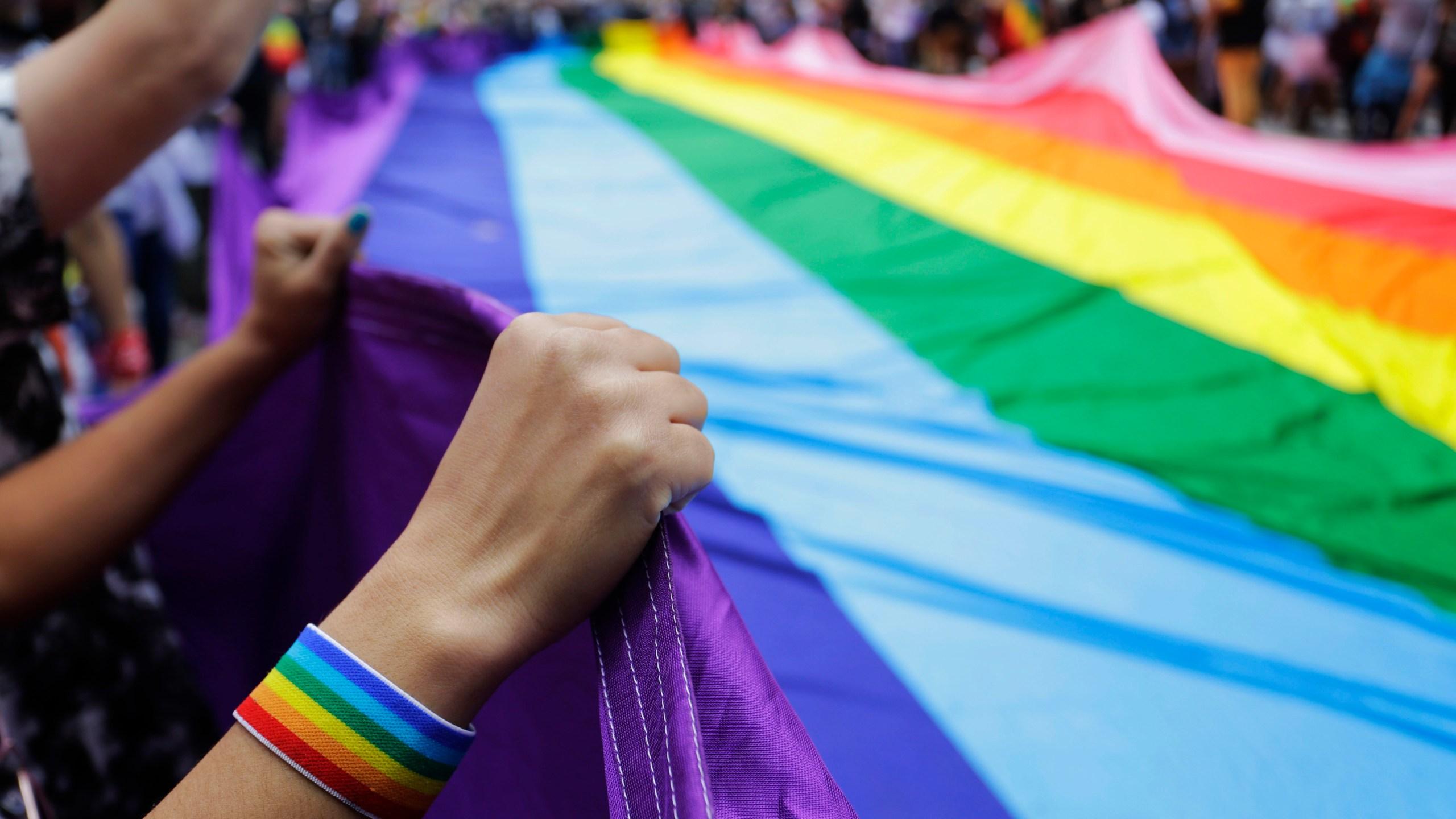 APTOPIX_Brazil_Gay_Pride_Parade_07548-159532.jpg22110426