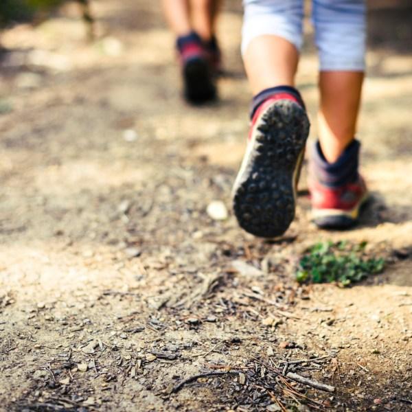 Hiking walking trail generic