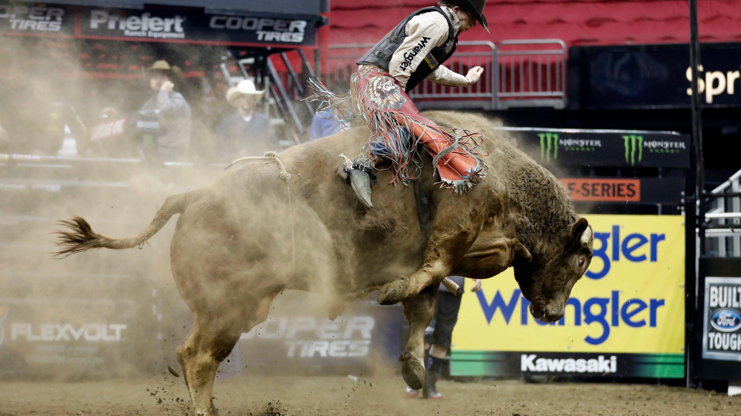 Bull Riding_1547733111278