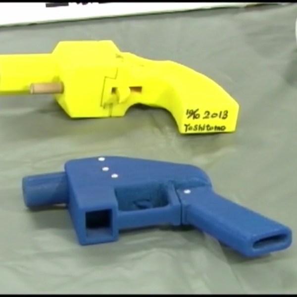 4 new gun control laws raised in Judiciary Committee