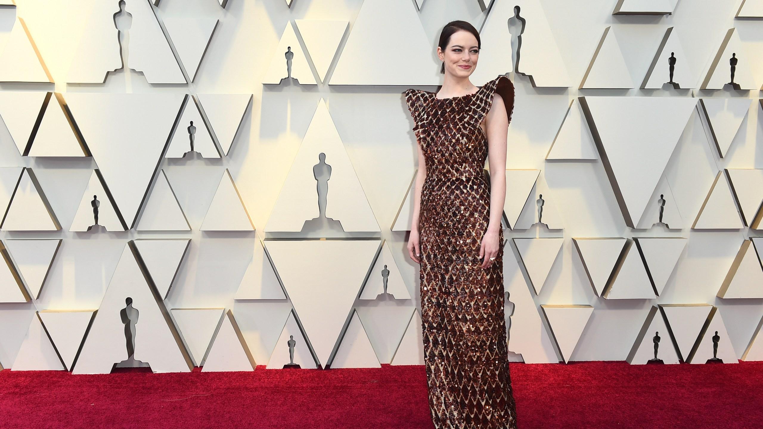 91st Academy Awards - Arrivals_1551055083249