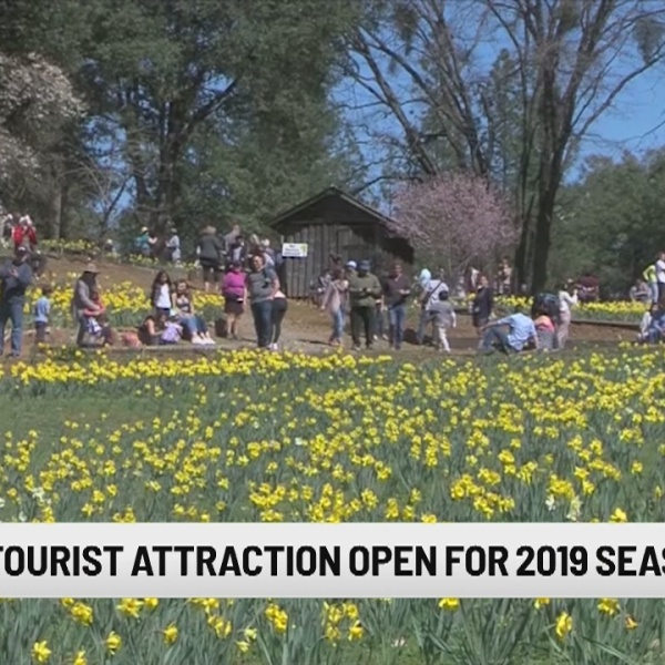 Popular California tourist attractions opens for 2019 season