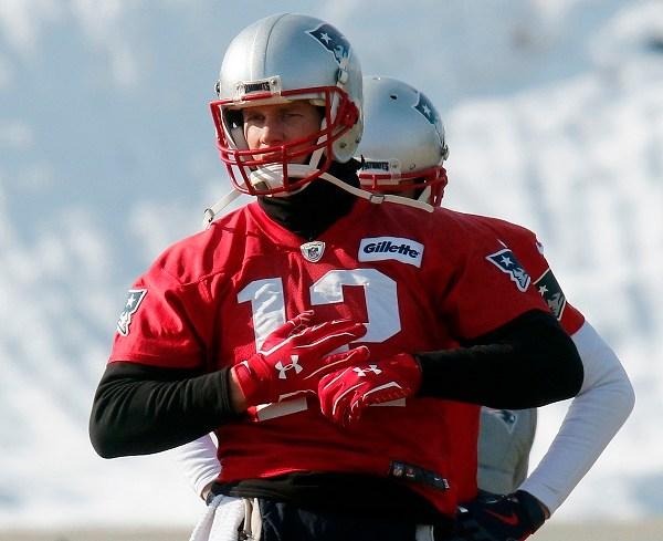 Tom Brady, Brian Hoyer_603944