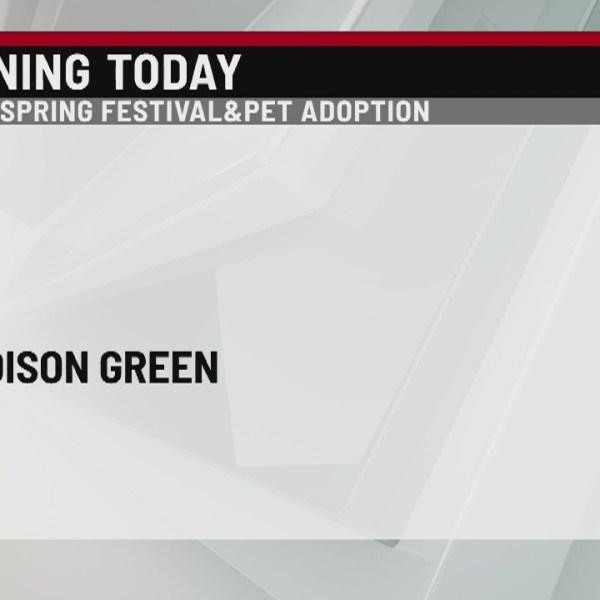 Animal adoption event held on Madison Green on Saturday