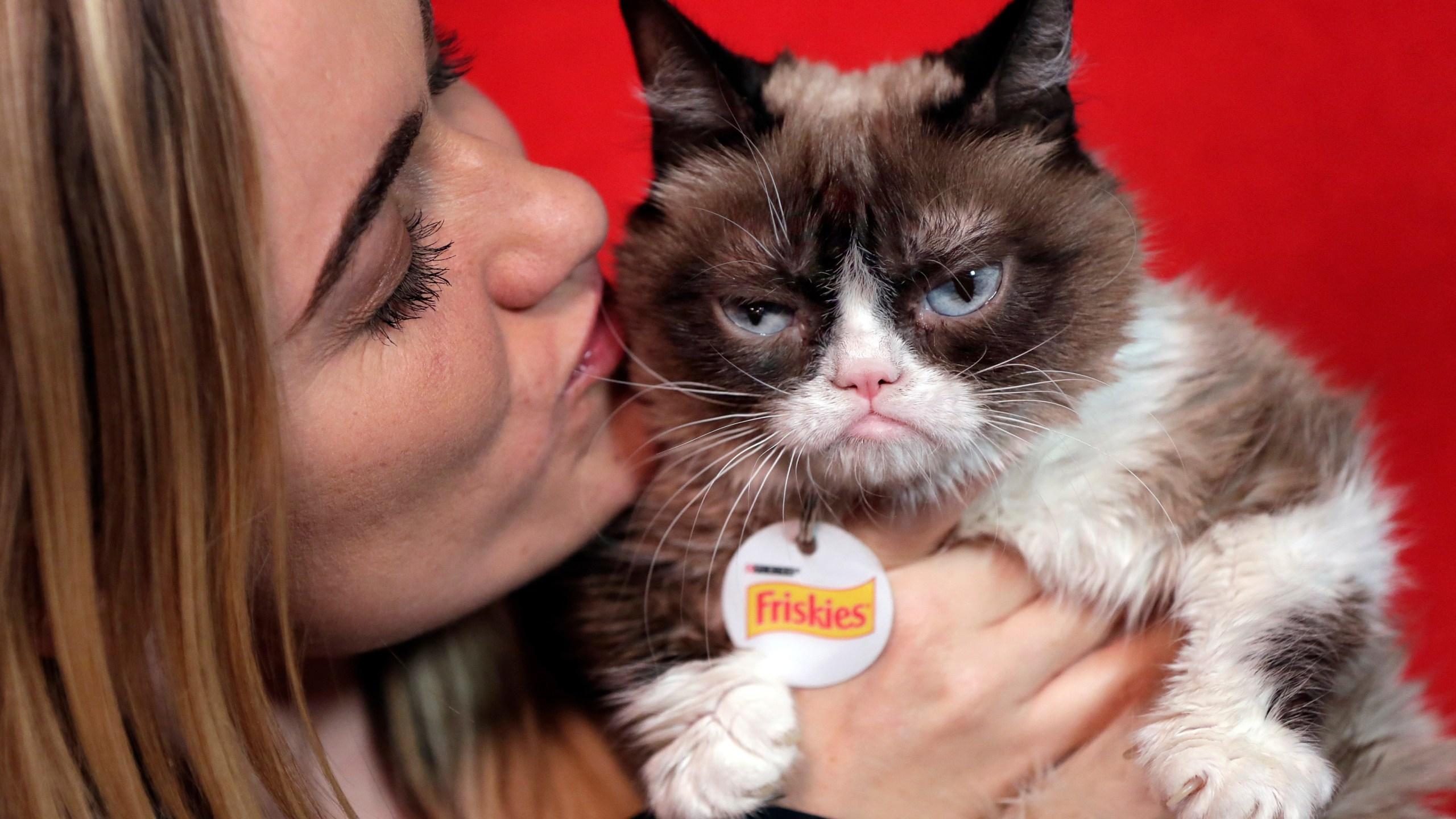 Grumpy_Cat_Coffee_Lawsuit_56493-159532.jpg85260583