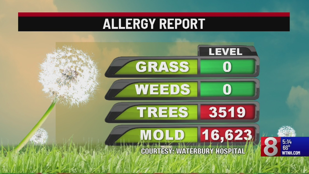 Connecticut experiencing high pollen counts this week