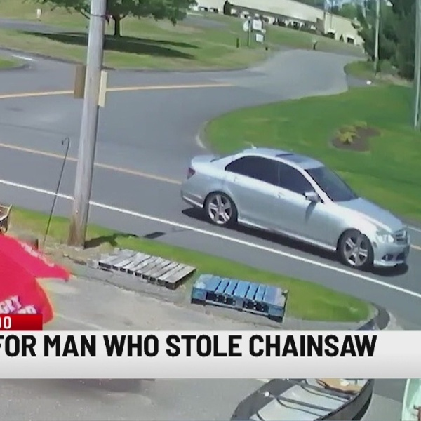 Stafford police search for man who stole chainsaw