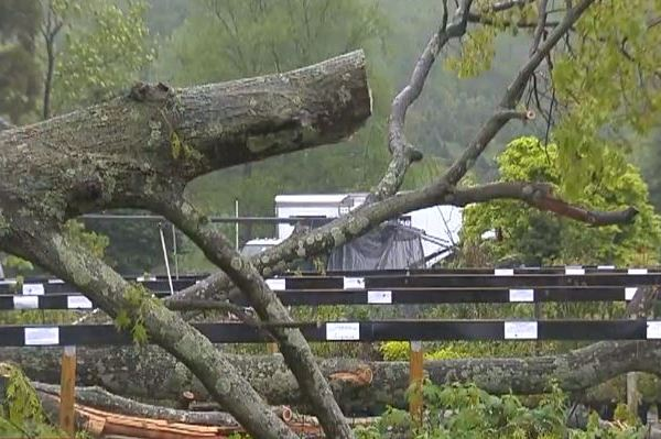 Reflecting on Connecticut tornadoes 1 year later