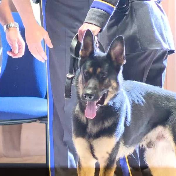 K9 officers graduate from state police academy