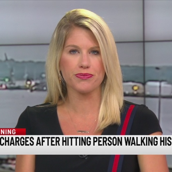 Man facing charges after hitting pedestrian walk their dog