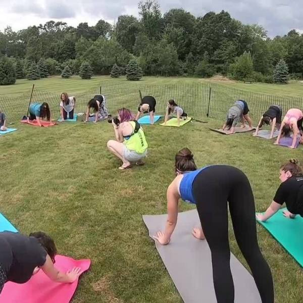 """Manchester business hosts """"puppy yoga"""" to benefit local rescue"""
