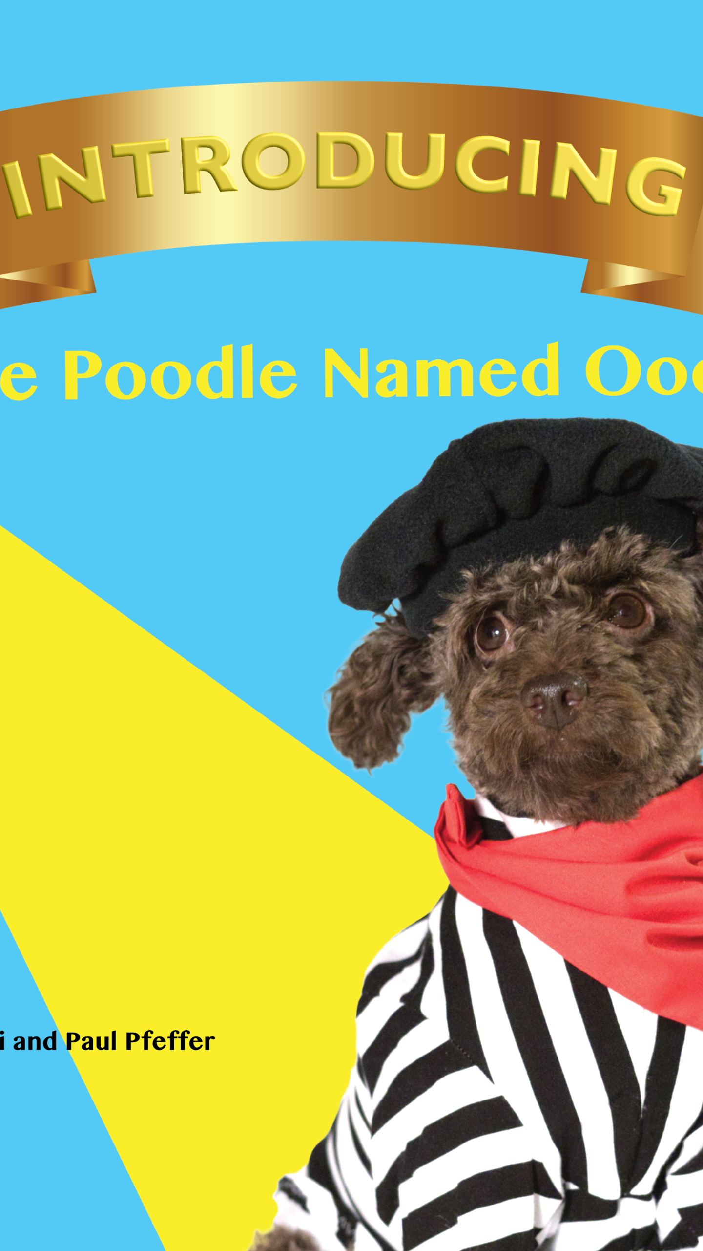 Introducing The Poodle Named Oodle | WTNH com