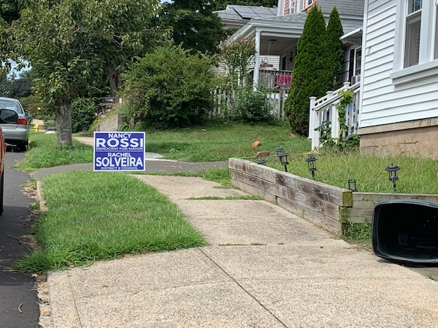 Political Signs Put In Their Yard
