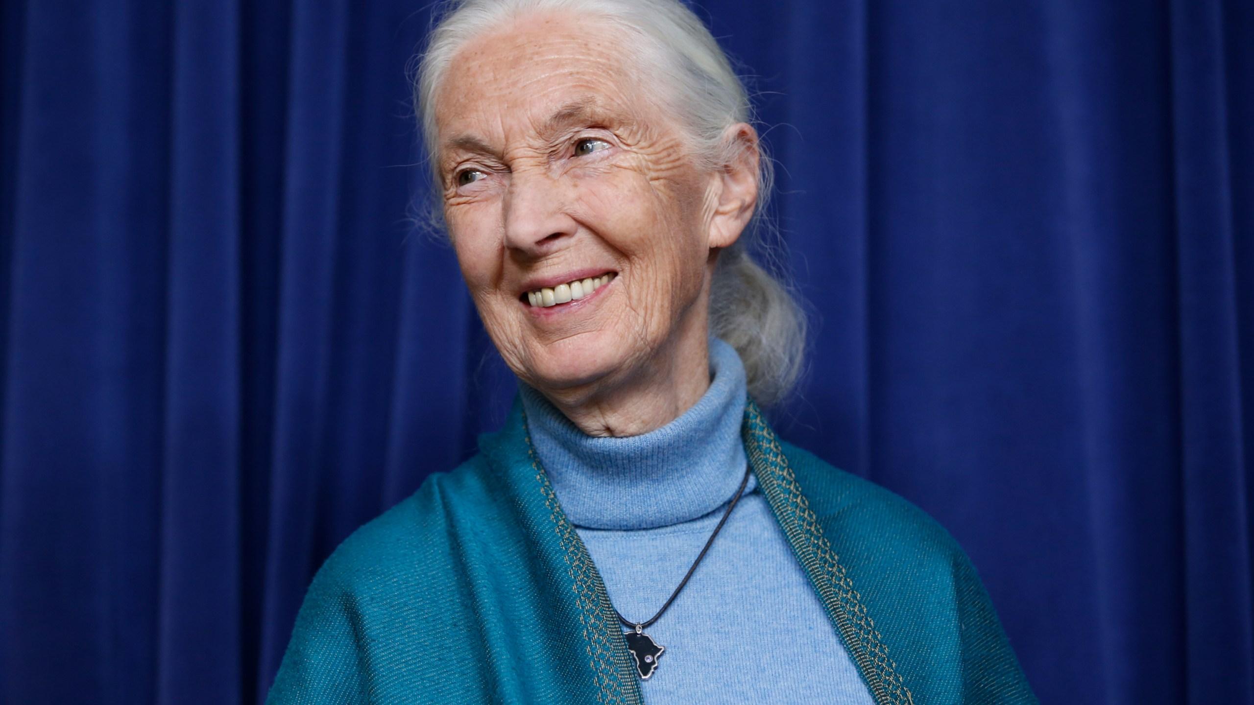 Jane-Goodall